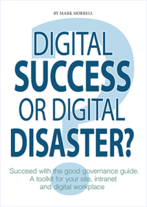 Book cover - Digital success or digital disasters